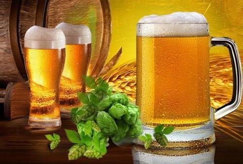 姑苏半点半分享:生啤、熟啤、原浆、纯生、干啤、冰啤、扎啤之间的区别